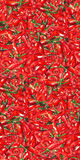 Watercolor red hot chili chilli spicy pepper seamless pattern texture background.  Stock Image