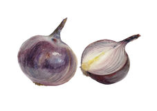 Watercolor red onions. Royalty Free Stock Photos