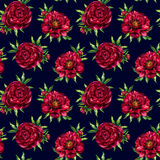 Watercolor red peony pattern Stock Image