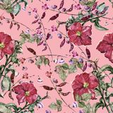 Red petunia with haricot flowers of watercolor. Floral seamless pattern on a pink background. royalty free illustration