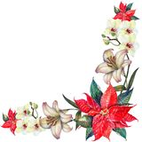 Watercolor red poinsettia with white lily and orchid corner. Stock Image
