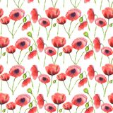 Watercolor red poppies pattern stock illustration