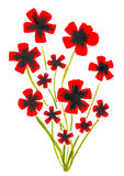 Watercolor red poppies Stock Photos