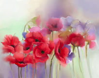 Watercolor red poppy flowers painting. Flower paint in soft color and blur style, Soft green background. Spring floral seasonal nature background royalty free illustration