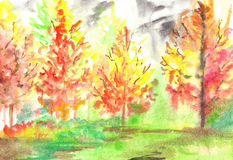 Watercolor red yellow autumn forest wood landscape Royalty Free Stock Photo