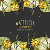 Watercolor reeds and yellow water lily background, greeting card template, artistic design background. Hand painted on a dark background Royalty Free Stock Photos