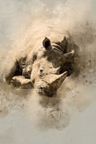 Watercolor Rhinoceros Royalty Free Stock Images