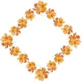 Watercolor rhombus frame colorful autumn maple leaves in a round dance, isolated on a white background, with space for text. Flower pattern for beautiful stock illustration
