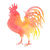 Watercolor rooster silhouette on white background. Oriental zodiac. Symbol 2017. Editable vector illustration Stock Image