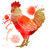 Watercolor rooster. Vector. Watercolor rooster with inscription isolated on white background. Happy New Year hand drawn vector inscription. Perfect for New year vector illustration