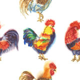 Watercolor Roosters. Hand drawn illustration. Seamless Pattern with Roosters. Hand drawn watercolor illustration Stock Photo