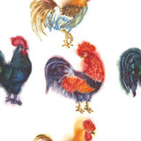 Watercolor Roosters. Hand drawn illustration. Seamless Pattern with Roosters. Hand drawn watercolor illustration Royalty Free Stock Photography