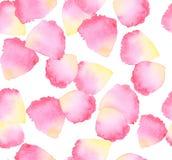 Watercolor rose petal design element. Stock Image
