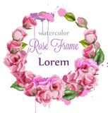 Watercolor Rose wreath decoration Vector. Round floral beautiful frames stock illustration