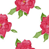 Watercolor rosehip seamless pattern Stock Images