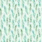 Watercolor Rosemary pattern seamless, green rosemary decoration, craft label design bio food. Vegetarian natural banner, restaurant menu background Royalty Free Stock Image
