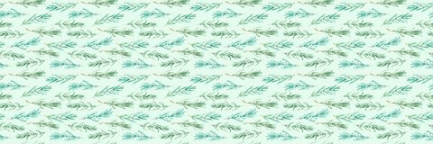 Watercolor Rosemary pattern seamless, green rosemary decoration, craft label design bio food Royalty Free Stock Photos