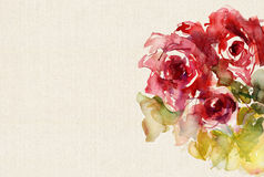 Watercolor roses on canvas structure Royalty Free Stock Images