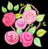 Watercolor roses flowers Stock Photos