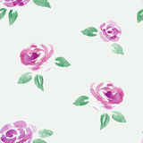 Watercolor roses flowers seamless. Stock Image