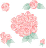 Pink Hand Painted Watercolor Roses Stock Images