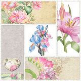 Watercolor Roses, iris and lilies Royalty Free Stock Photography