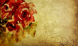 Watercolor roses and ornament on old paper Stock Photos