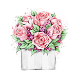 Watercolor roses in package Stock Photo
