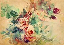Watercolor roses painted on paper Royalty Free Stock Photo