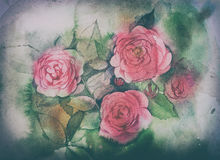 Watercolor roses painting Royalty Free Stock Image