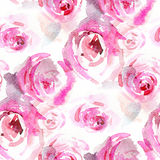 Watercolor roses Royalty Free Stock Photo