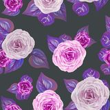 Watercolor roses seamless pattern royalty free illustration