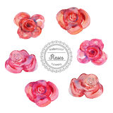 Watercolor roses in vintage style for design. Royalty Free Stock Photography
