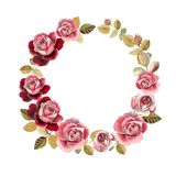 Watercolor roses wreath. Roses wreath illustration template isolated on white royalty free illustration