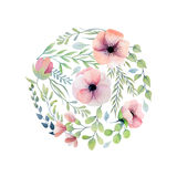 Watercolor round floral composition Stock Image