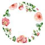 Watercolor round floral frame of roses Royalty Free Stock Photography