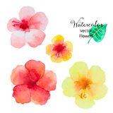Watercolor Round Frame Stock Photo