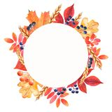 Watercolor round frame with mushrooms, leaves, nuts, acorns. stock illustration