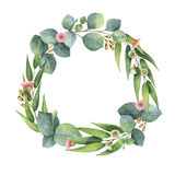 Watercolor round wreath with eucalyptus leaves and branches. Watercolor hand painted round wreath with eucalyptus leaves and branches. Healing Herbs for cards stock illustration