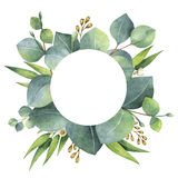 Watercolor round wreath with eucalyptus leaves and branches. Watercolor hand painted round wreath with eucalyptus leaves and branches. Healing Herbs for cards vector illustration
