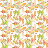 Watercolor rowan ashberry leaf branch botanical seamless pattern.  Royalty Free Stock Photo