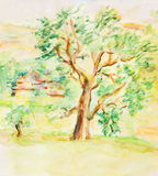 Watercolor Rural Summer Landscape Stock Photography