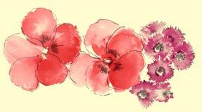 Watercolor of sakura and daisy Stock Photo