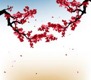 Watercolor sakura frame. Background with blossom cherry tree branches. Hand drawn japanese flowers background. Happy Chinese New Year 2019, Year of the Pig