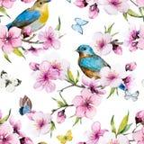 Watercolor sakura pattern vector illustration