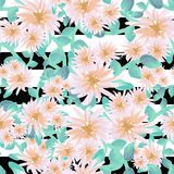 Watercolor scattered aster flowers light pink gold teal on black and white stripes seamless pattern stock illustration