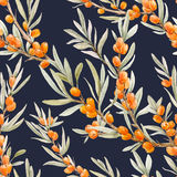 Watercolor sea buckthorn pattern Royalty Free Stock Photo