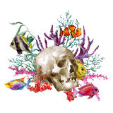 Watercolor sea life greeting card with skull and Royalty Free Stock Photo