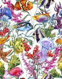Watercolor sea life seamless background Royalty Free Stock Photography