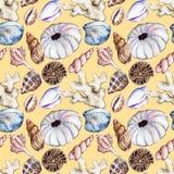 Watercolor sea ocean seahorse seashell coral ammonit urchin seamless pattern Royalty Free Stock Photos